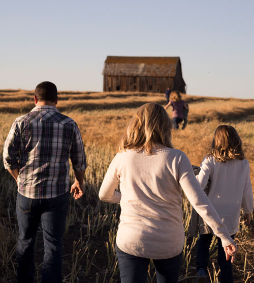 people walking through field